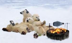 polar BBQ