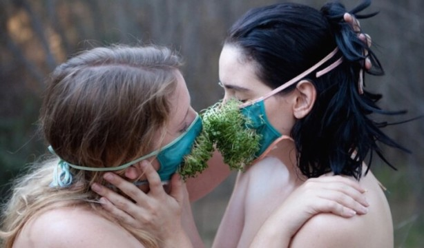 amour vert